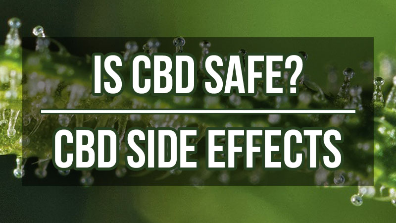 Cannabidiol effects