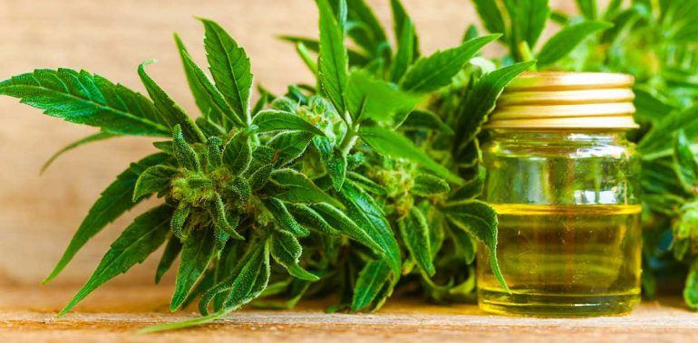 Cheap CBD Oil