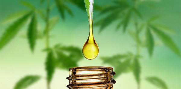 Will CBD oil show up in a drug test