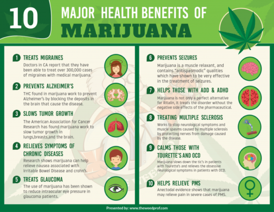 Major Health Benefits of Marijuana